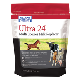Sav-A-Caf Grade A Ultra 24 Milk Replacer 8 lb