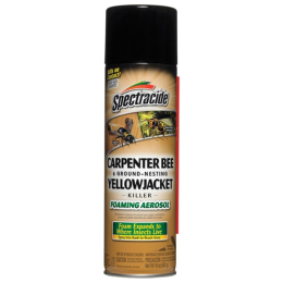 Spectracide Carpenter Bee and Ground-Nesting Yellow Jacket Killer Foaming Aerosol 16 oz