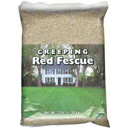 Southern States Creeping Red Fescue 3 lb