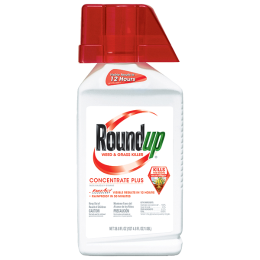 Roundup Weed and Grass Killer Concentrate Plus 36.8 oz