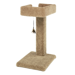 Ware Kitty Cactus Carpeted Scratching Post With Toy 24 in