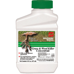 Southern States Grass and Weed Killer Concentrate 16 oz