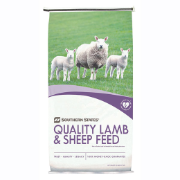 Southern States Hi-Energy Lamb Starter-Grower (BVT) Medicated 50 lb