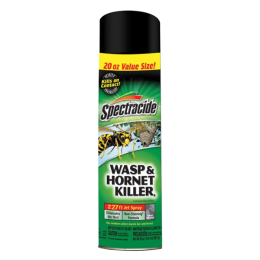 Spectracide Wasp and Hornet Killer Spray 20 oz