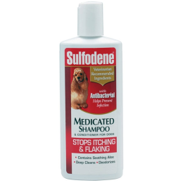 Sulfodene Medicated Shampoo & Conditioner 12 oz