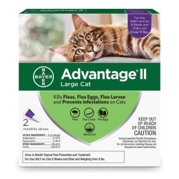Bayer Advantage II Flea Treatment for Large Cats 4 Pack